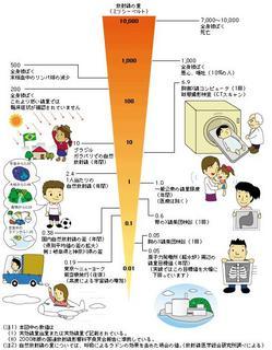 日常生活と放射線の関係.JPG